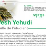 Nefesh Yehudi: Ki Tissa