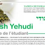 Nefesh Yehudi: Tazria